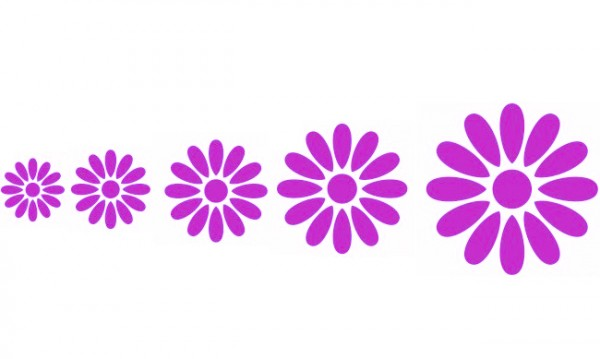 Wandtattoo Blüten
