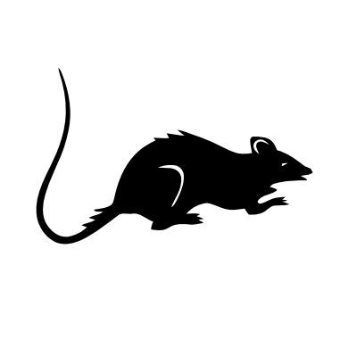Wandtattoo Ratte
