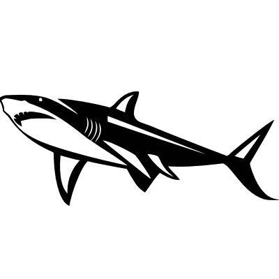 Wandtattoo Hai